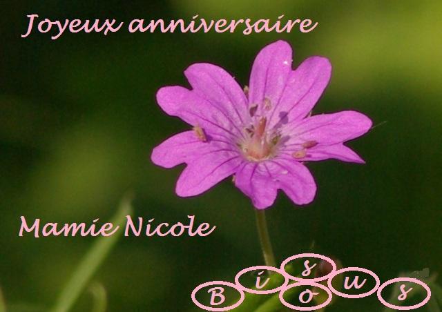 Bon Anniversaire Mamie Nicole Le Bon Coté Des Choses
