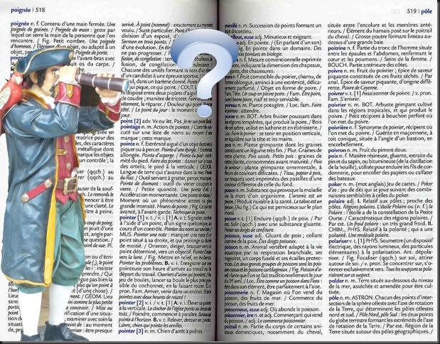 dictionnaire_de_francais_de_poche_p1