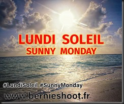 ob_0fef43_lundi-soleil-sunny-monday-logo-officie