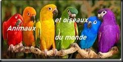 animaux et oiseaux du monde