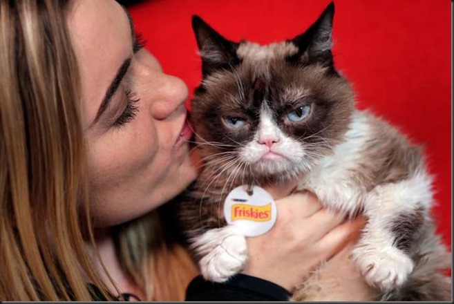 Grumpy Cat Coffee Lawsuit