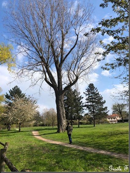 parc Longeville